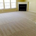 professional-carpet-cleaning
