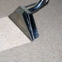 gold coast carpet cleaning service