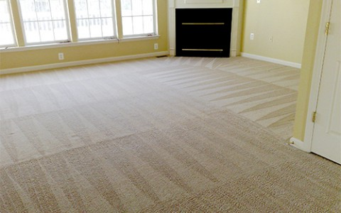 professional-carpet-cleaning-miami-gold-coast